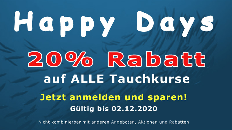Angebot Happy Days 2020
